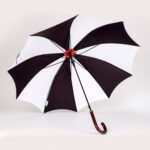 Chapelo-Umbrella-3-1